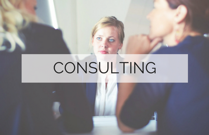 1 Consulting Services
